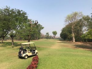 We also have a rose garden and a Mughal garden inside Jubilee Park. All in all, it is a place where one can find serenity bang in the middle of a city!