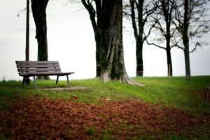 image of a bench in park